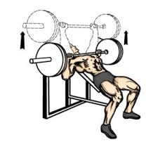 What Muscle Do Bench Press Work Incline Bench Press For Chest Workout