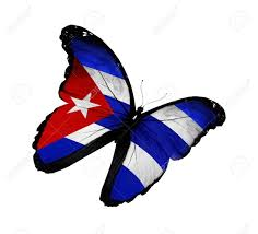 Cuban Flag Images Cuban Flag Butterfly Flying Isolated On White Background Stock