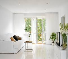Small House Plants by White Small Minimalist Living Room With Houseplants Creating A