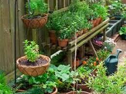 outdoor zen garden outdoor zen garden plants outdoor