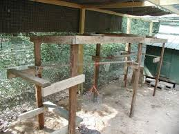 build a jungle gym for your backyard chickens diy projects for