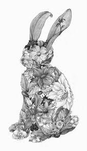 Emma Freud Rabbit Hutch 160 Best Bunnies Images On Pinterest Animals Rabbits And Bunnies