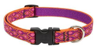 medium collars designs guaranteed even if chewed lupine