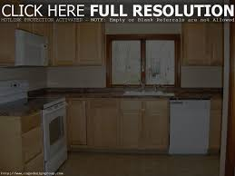kitchen on a budget ideas kitchen amazing how to remodel a kitchen on a budget home design