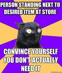 Anxiety Cat Memes - i am anxiety cat and anxiety cat is me so let him have bananas on