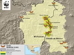 Michoacan Mexico Map by Monarch Butterfly Wwf Canada
