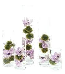 Where To Buy Glass Vases Cheap Cheap Tall Glass Vases Uk Large For Candy Buffet 26375 Gallery