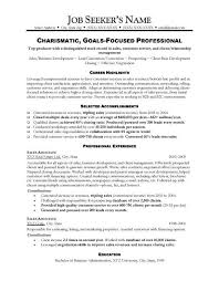 Sample Resume  Sle Resume Sales Manager Position