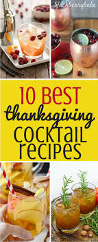 the 25 best thanksgiving cocktails ideas on