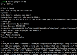Netstat Flags Networking Hacker Tricks U2013 Mithrandir U2013 Medium