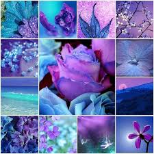 Colors Of Purple Best 25 Purple Color Schemes Ideas On Pinterest Purple Palette
