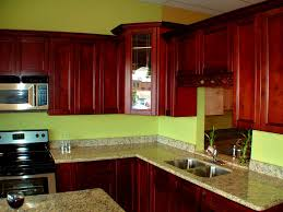 Black Glazed Kitchen Cabinets Bathroom Pleasing Red Kitchen Cabinets Pictures Ideas Tips From