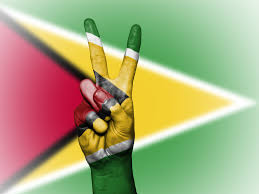 Guyana Flag Constitutional Reform Pressure Group Formed In Guyana