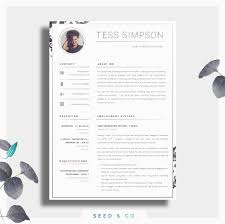 Resume Sample Jamaica by Cv Template Creative Resume Template Two Page Professional