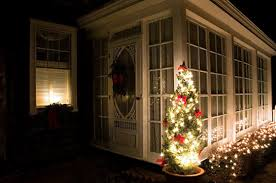tips to care for a live christmas tree new england today