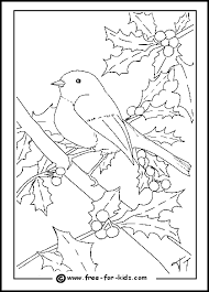 christmas tree birds coloring pages robin colouring