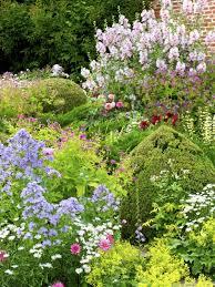 pflanzen f r balkon pflanzen fr balkon und garten schön pflanzen für den garten