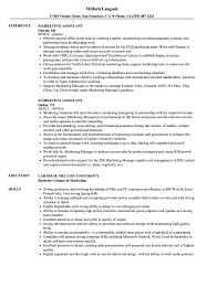 sle resume templates accountant trailers plus lodi marketing assistant resume sles velvet jobs