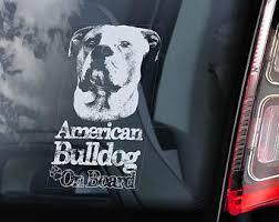 american bully etsy