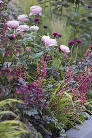 Cottage Garden Ideas Pinterest by Choose A Colour For Your Planting Palette Tips From Jo Anne