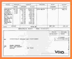 payroll pay stub template hitecauto us