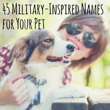australian shepherd unique names military inspired names for your military family u0027s pet