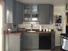 Kitchen Cabinet Door Colors Grey Kitchen Cabinet Doors Image Collections Glass Door