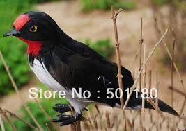 compare prices on decorative small birds shopping buy low