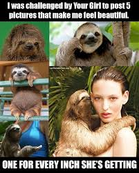 Annoying Mom Meme - beautiful sloth i challenge your mom and your sisters so