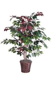 how to pot artificial trees silk plants silk tree ficus and