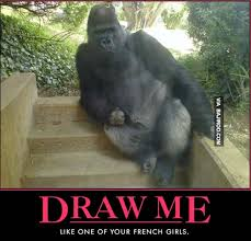 Funny Gorilla Meme - funny gorilla pose draw me bajiroo com