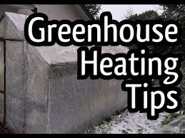 Backyard Greenhouse Winter My Tips And Tricks To Heat A Greenhouse Come Winter Electric