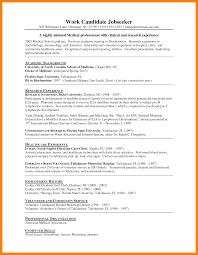 chic it intern resume template on intern resume template