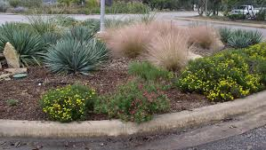 native planting native plant landscaping ideas backyard fence ideas