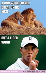 Tiger Woods Memes - laws of the animal kingdom funny pinterest animal kingdom