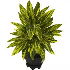 20 Inch Planter by 20 Inch Indoor Silk Ginger Plant With Decorative Black Planter 6789