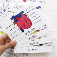 toasts et canap駸 lifelong learning series organ postcard set 4pcs