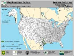 North America Forest Map by Forest Pest Insects In North America A Photographic Guide