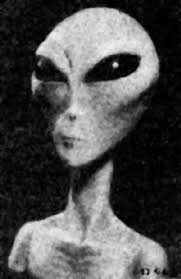 types of grays the greys grays alien race species pictures and videos alien ufo