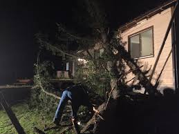 Seattle City Light Power Outage Map by Powerful Winds Whip Washington Killing One Bringing Down Trees