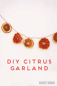 citrus garland and ornaments maker