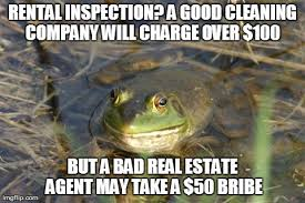 Bachelor Frog Meme - actual advice foul bachelor frog imgflip