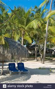 dominikanische republik bayahibe viva wyndham dominicus beach