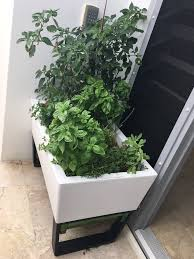 glowpear urban garden self watering planter box u2013 vertical gardens