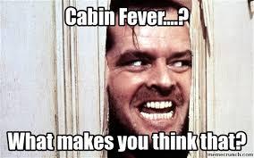 Fever Meme - cabin fever dassit pinterest cabin fever and meme