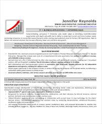 Account Executive Resume Example by Executive Resume Examples 24 Free Word Pdf Documents Download