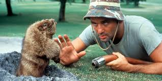 Bill Murray Groundhog Day Meme - bill murray is the best and you know it huffpost