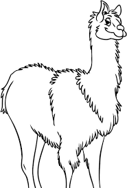coloring pages of animals squirrel coloring pages animal