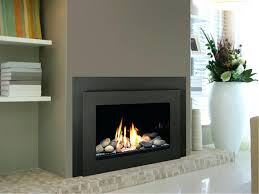 propane gas fireplace insert vent free inserts reviews near me