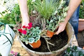 Winter Container Garden Ideas How To Plant Large Winter Containers Gardening